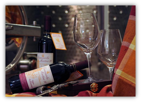 immagine.martino.iv